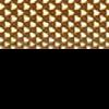 Gold / Black